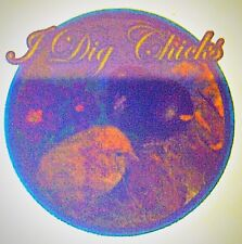 Original I Dig Chicks Mini Iron On Transfer 3x3 inches