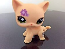 Littlest Pet Shop Cat #1962 Yellow Purple Flower Short Hair Green Eye USA Seller