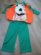 Pumpkin Fancy Dress Costume Age 3-4 Years Ladybird