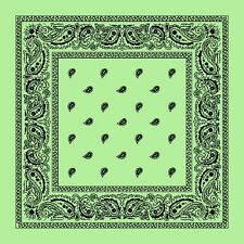 Mint Green Paisley Center Cotton Bandana Scarf Handkerchief Hanky 18 X 18 Inch