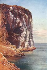 BASS ROCK. Firth of Forth, Haddingtonshire 1904 old antique print picture