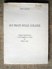 Dino Carlesi - Sui prati sulle colline