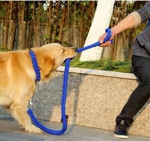 Dog Leash Chain Running 1pc Double Strand Rope Adjustable Collar Black Walking
