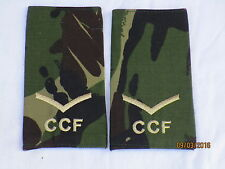 Rango cinghie: lance Corporal, CCF, DPM, Combined Cadet Force, COPPIA, 60x115mm