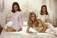 Valley Of The Dolls Sharon Tate Patty Duke Barbara Parkins Seductive 18x24Poster