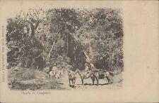 PARAGUAY PICADA DE CAAGUAZU ED. JUAN QUELL