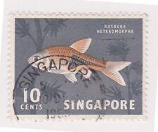(K65-277) 1962 Singapore 10c Harlequin fish (AF)