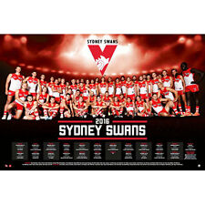AFL - 2016 Team Posters Sydney Swans POSTER 61x91cm NEW * Footy