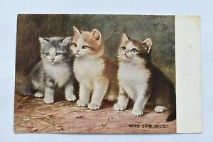 Vintage Postcard Group of Kittens Comic Humour 'Who Said Mice ?' Unposted
