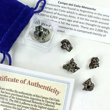 Meteorite from Space, 5 pcs Campo del Cielo from Argentina/ Educational Card