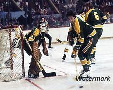 NHL 1972 California Golden Seals Vadnais Meloche Color Game Action 8 X 10 Photo