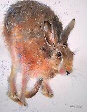 ORIGINAL watercolour animal/wildlife/farm/rabbit art painting HARE, Clare Crush
