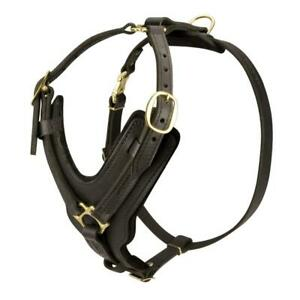 Extra Strong Rottweiler Luxury Leather Dog Walking Training Harness Padded Large