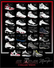 "TY02674 Michael Jordan Nike Air Jordan Brand Hot Canvas Big 14""x18"" Poster"