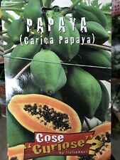 GOLDEN Papaya NANA//facile da coltivare ERBA Papaya//10 SEMI FRESCHI GRATIS 10 = 20 Semi