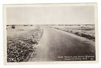 c1930 RPPC IMPERIAL VALLEY CA WILD FLOWERS DESERT BRAWLEY POSTCARD CALIFORNIA !!