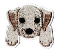Patch écusson patche chien mignon thermocollant hotfix brodé badge