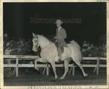1955 Press Photo Rider W.J. French astride Show Walking Horse - nox27248