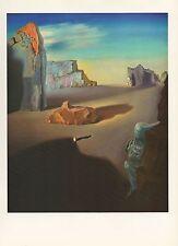 "1976 Vintage SALVADOR DALI ""SHADES OF NIGHT DESCENDING"" Color Print Lithograph"