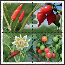 Peppers Brazil Stamp malagueta dedo-de-moça biquinho bode 2015 胡椒コショウKoshōHújiāo
