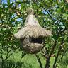 Nid d'oiseau Paille Cages Maison de Lit Pour Pigeon Perroquet