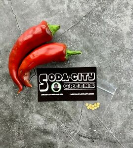 Paprika Hungarian Pepper Seeds 10+ Packaged for 2021 SHIPS FREE