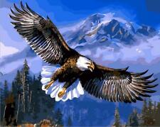 16X20'' Acrylic DIY Paint By Number kit Beautiful Eagle Flying On Canvas 148