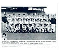 1956 MINNEAPOLIS MILLERS  8X10 TEAM PHOTO BASEBALL NEW YORK GIANTS VIRGIL