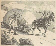 A4473 Carro senza ruote da campagna della Siberia - Incisione Antica del 1887