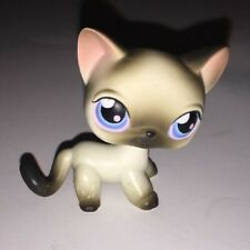 Littlest Pet Shop #5 Short Hair Siamese Cat Gray And White With Blue Eyes Kitty