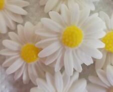 18 WHITE AND YELLOW SPRING DAISIES Edible cake topper decoration cupcakes