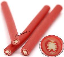 5pz bastoncini Fimo nail art unghie stick  5x0.5cm  decorazione pomodoro