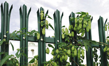 2.0m high Palisade Security Fencing Powder Coated Green or Black