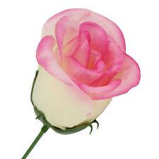 trendmarkt24 Seidenblumen Rose rosa 3  Stück ca. 26  cm lang und ca. WP