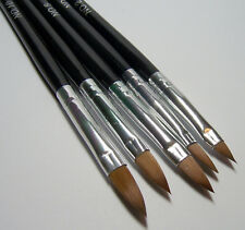 5 Assorted Oval Pointed Paint Brushes Use for Watercolor, Acrylic & Art Mediums