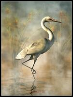Wading Egret - DIY Chart Counted Cross Stitch Patterns Needlework 14 ct DMC