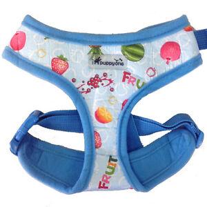 Dog Puppy Soft Harness - iPuppyOne - Adjust Neck & Chest - Fruity - Blue - Small