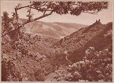 G1275 France - La vallée et les ruines de Cabrespine - Stampa - 1935 old print