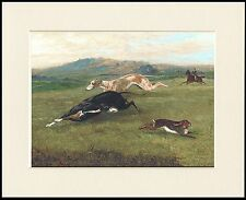 GREYHOUND DOGS CHASE HARE LOVELY DOG PRINT MOUNTED READY TO FRAME