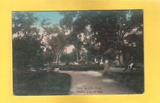 Valley City,ND North Dakota View in City Park used 1908 hand colored