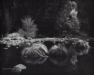 1950s Vintage ANSEL ADAMS Yosemite Valley River Grass Landscape Photo Art 11X14