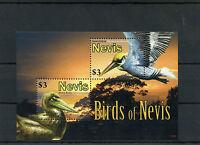 Nevis 2010 MNH Birds of Nevis 2v S/S Brown Pelican Brown Booby