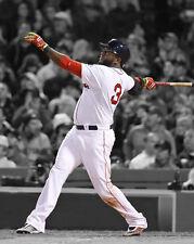 Boston Red Sox DAVID ORTIZ Glossy 8x10 Photo Spotlight Print Baseball Poster