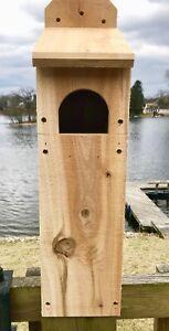 "Screech Saw-Whet 3/4"" Solid Cedar Owl House Nesting Box"