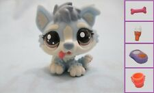 Littlest Pet Shop Chien Husky Baby Dog 1683 Free Accessory Authentic Lps