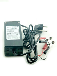 Ultramax 12V 5Ah 240V Lithium-ion (Li-ion), LiNiMnCoO2 Battery EU Plug Charger