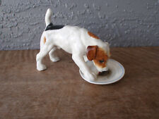 Vintage Royal Doulton Jack Russell Terrier Dog Licking a Plate / Dish Hn 1158