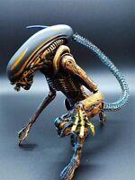 "7"" NECA Toy Aliens blue alien Xenomorph figma Predators PVC action figure"