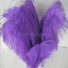 10pcs Purple Real Natural Ostrich Feathers For Wedding Decorations 12~14 inch