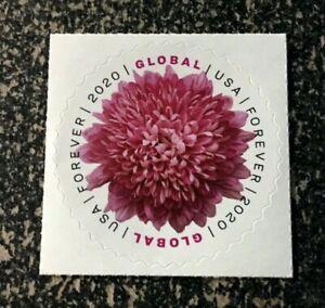 2020USA #5460 Global Forever - Chrysanthemum  Single Mint (international sase)